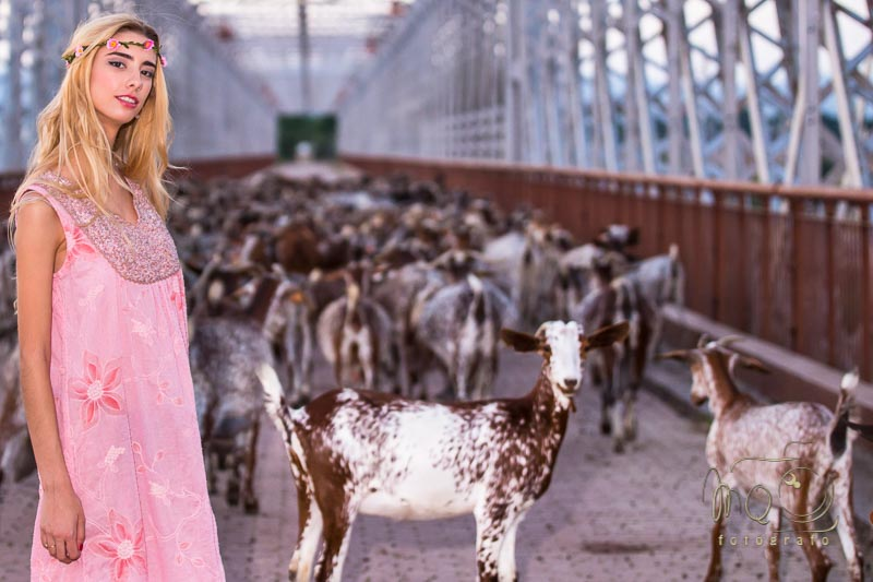 modelo en puente con cabras