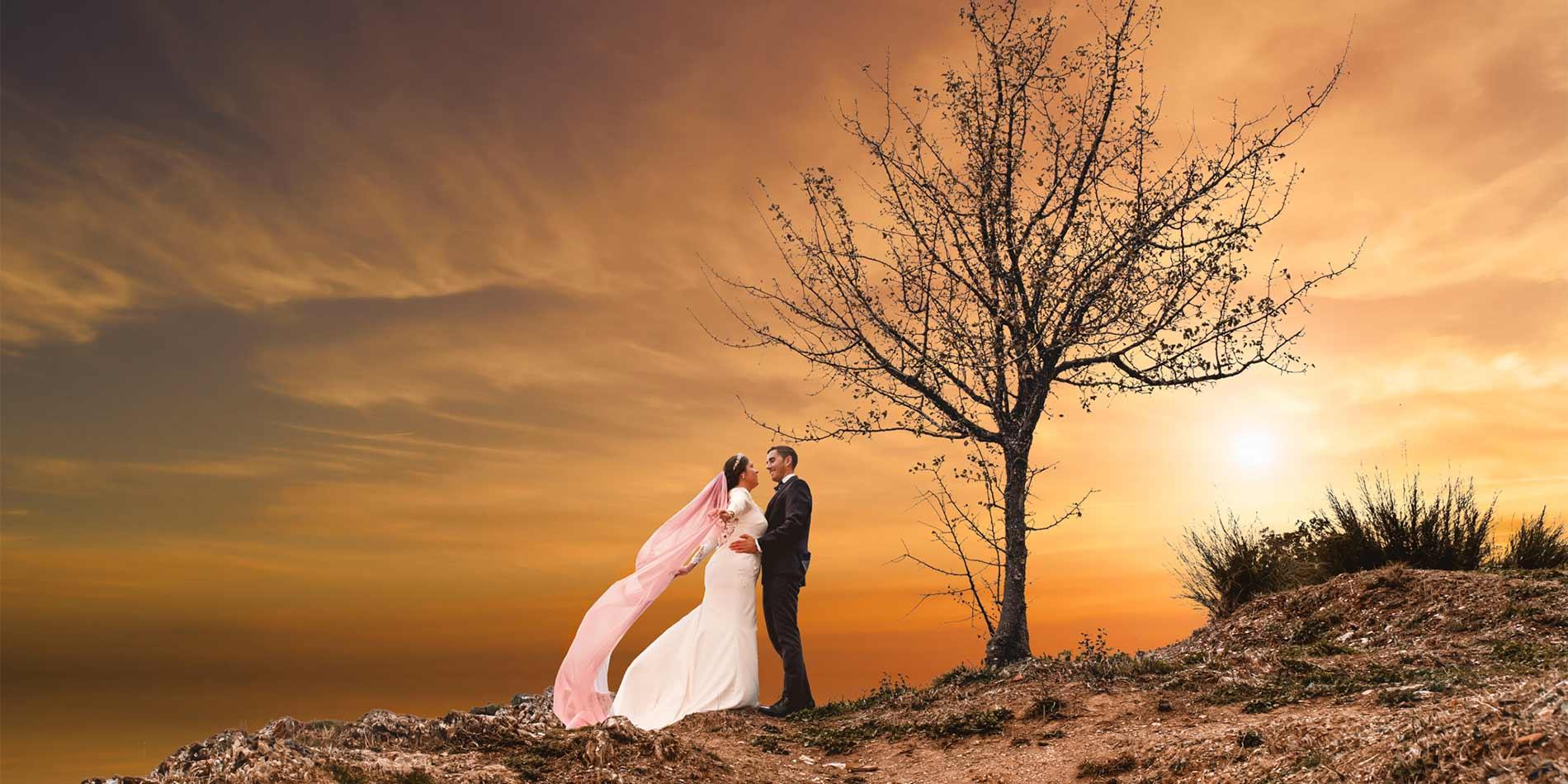 bodas en sevilla, pareja de novios junto a un árbol al atardecer